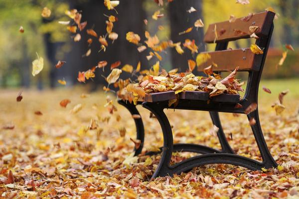 An Autumn Hymn